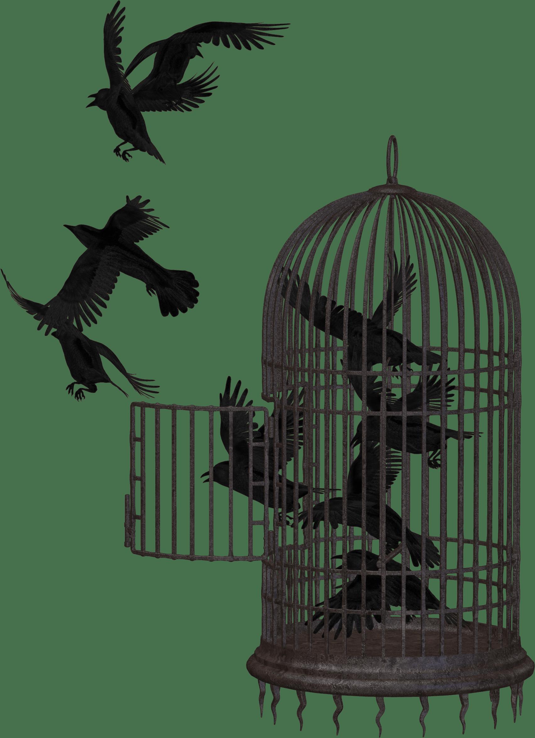 Vogelkäfig mit offener Tür und fliehenden Vögeln als Symbol für die (scheinbare) Falle, aus der es einen Ausweg gibt